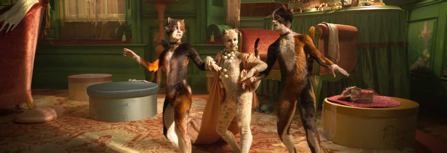 Cats - No bad kitty, no one is the Jellicle Cat